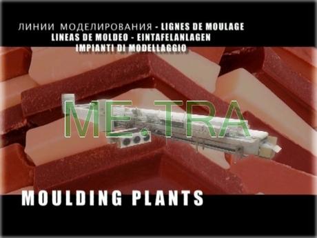 07 moulding plants